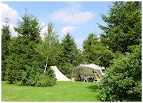 Ruime kampeerplaatsen op camping Drentsheerlijk in Drenthe